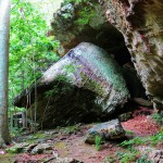 Caverns at Bell Smith Springs